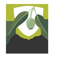 Brooks High School Logo