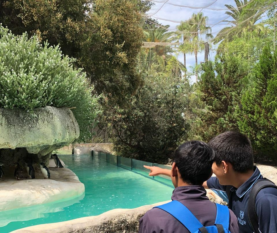 Academic Extension students excursion to Perth Zoo