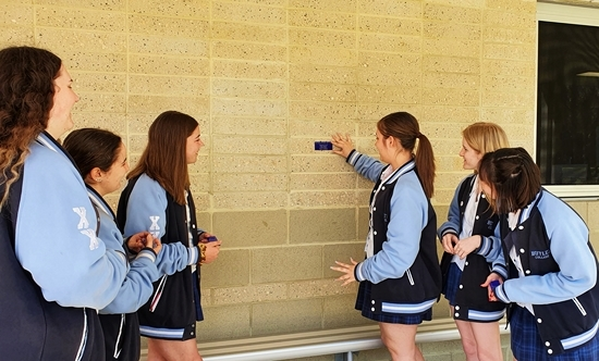 Placing the Plaque