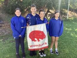 Wombats.jpeg