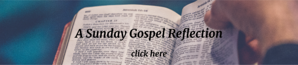 sunday_reflection_banner_78.png