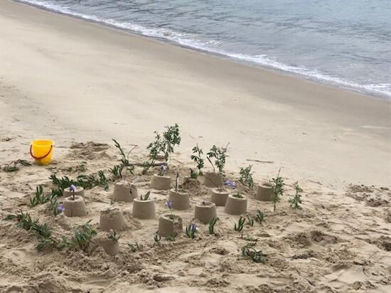 Finished sandcastle city
