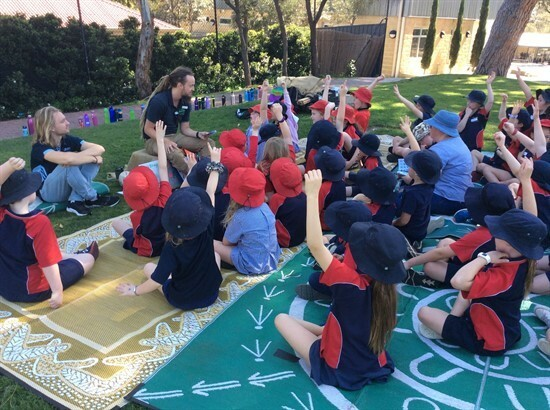 Nature Play Incursion Gallery