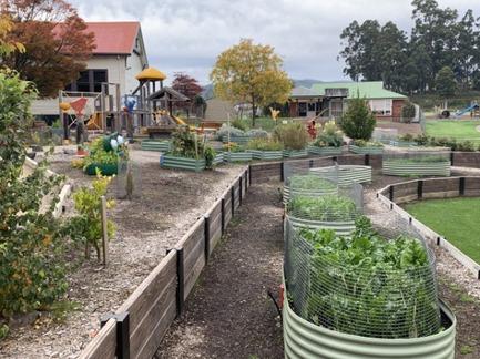 garden pic1