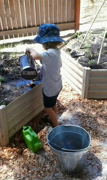Kindy Gardening