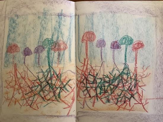 Bush Journals 8