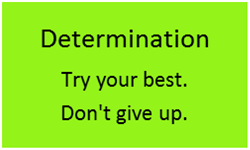 School Values - DETERMINATION