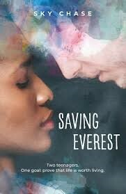 Saving Everest