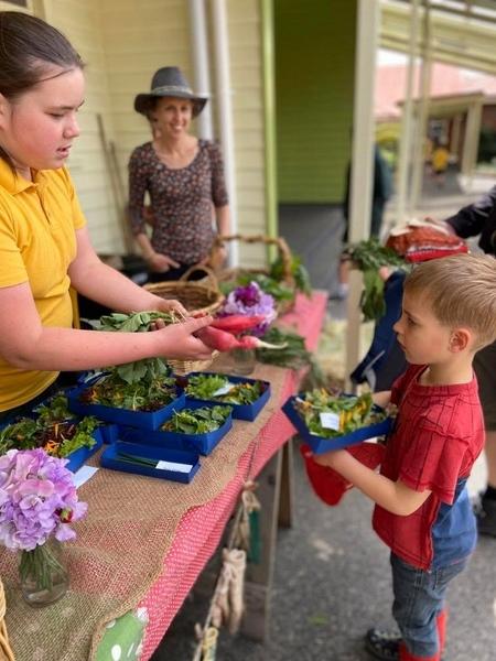 Garden Shop (12)