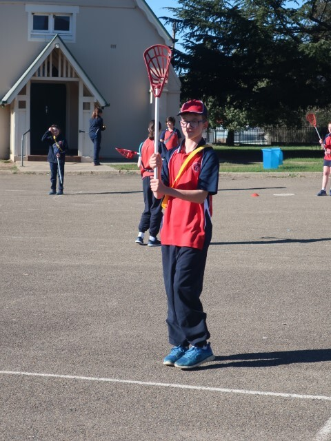 Lacrosse 003 (Small)