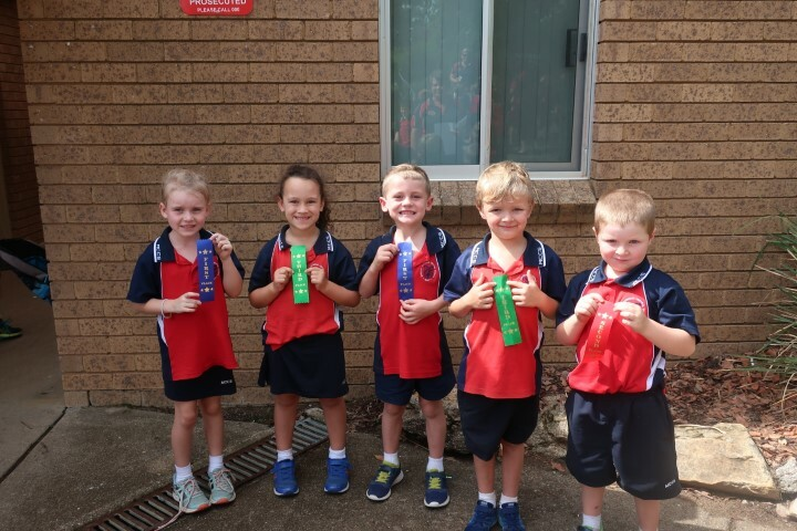 Cross country K-6 (9) (Small)