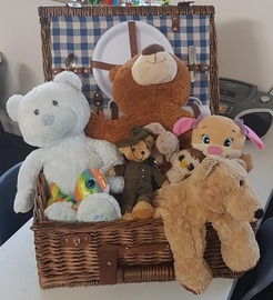 Teddy_Bear_Picnic.jpg
