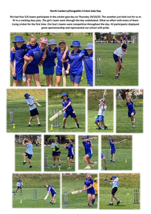 North_Canberra_Cricket_Day.png