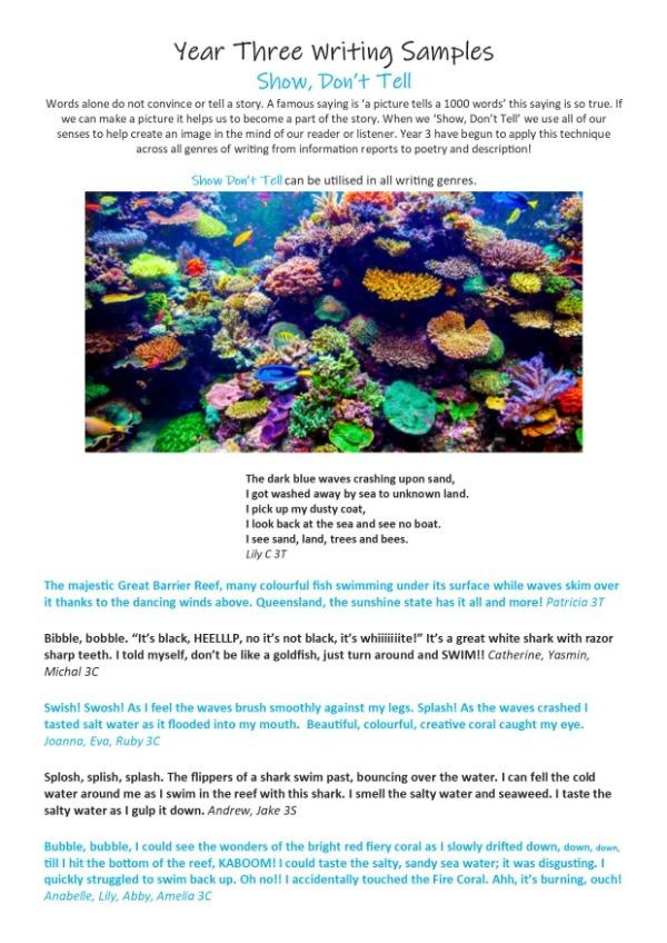 Y3_7_Steps_Samples_Newsletter.jpg