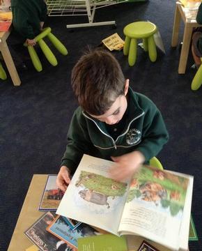 reading_book.JPG
