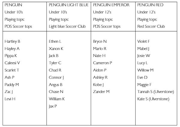 Soccer_Roster.PNG
