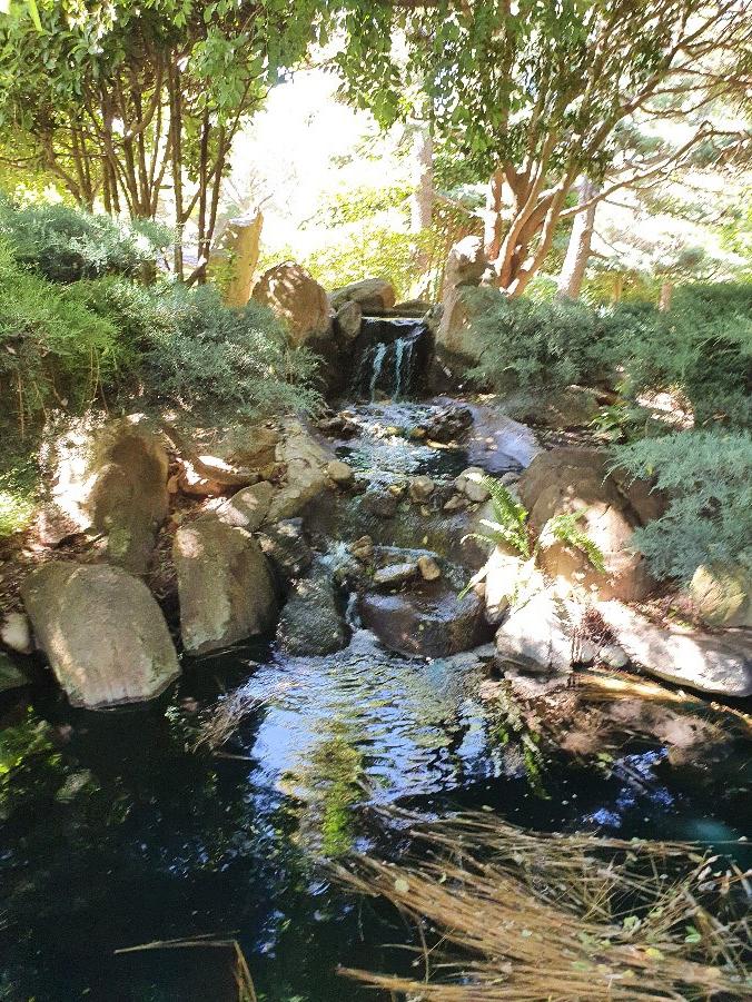 Japanese gardens 5