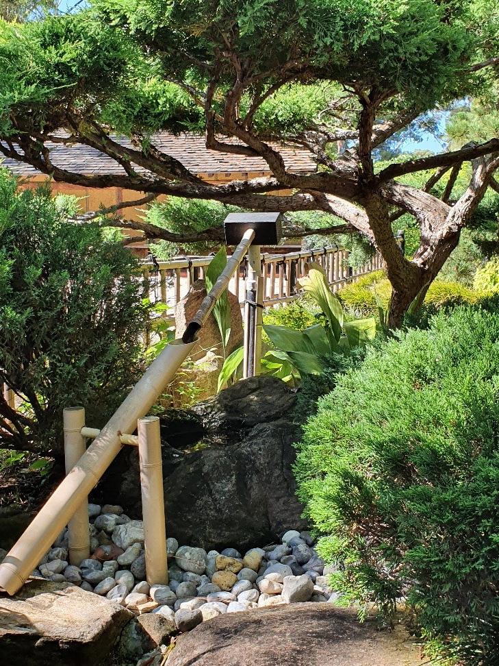 Japanese gardens 6