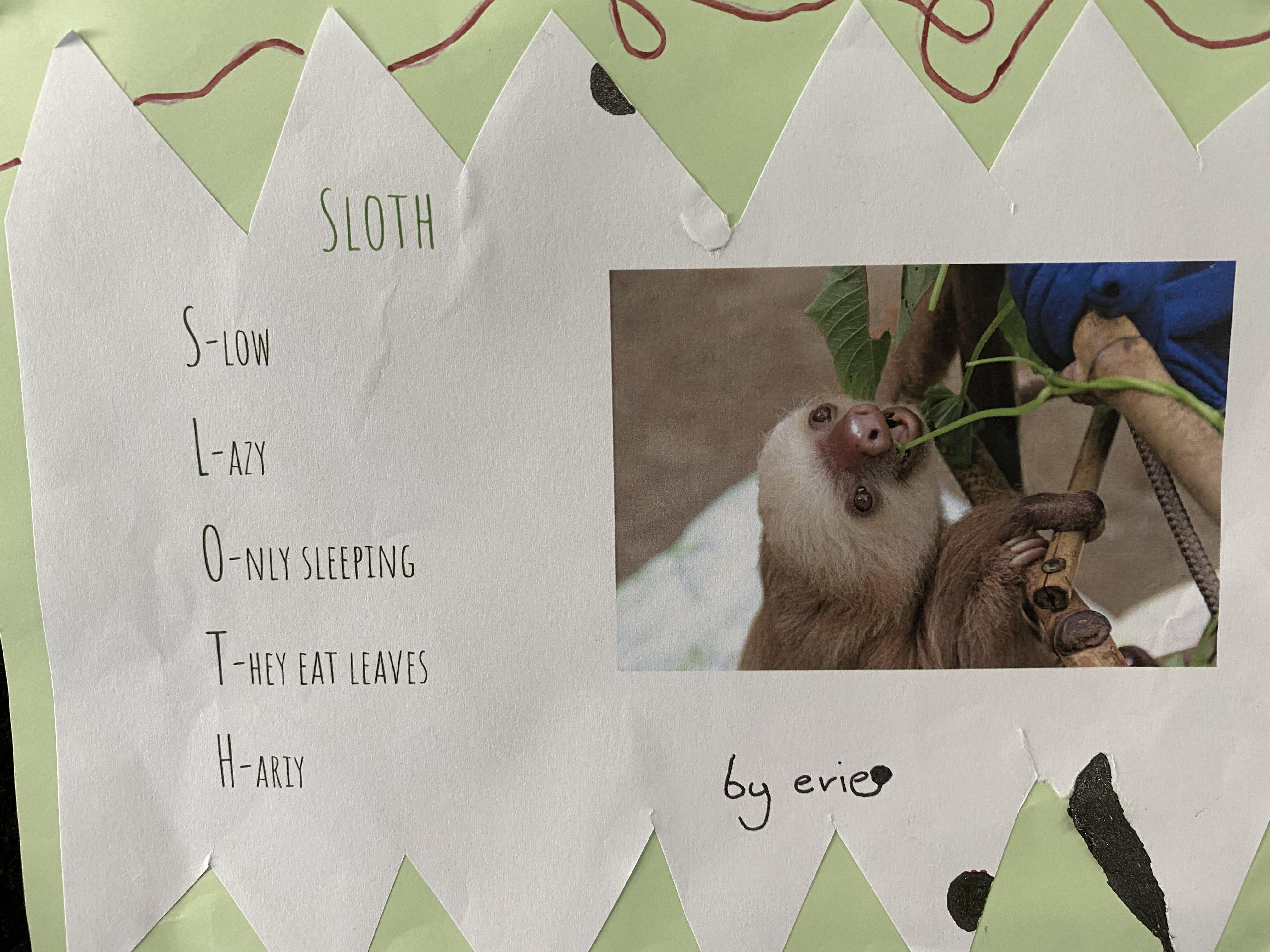 Acrostic - sloth