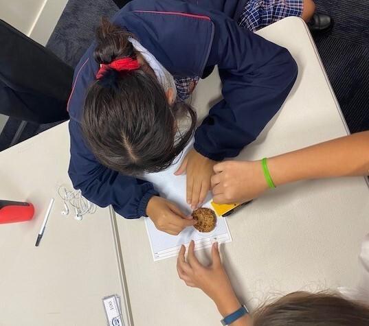 STEM Workshop
