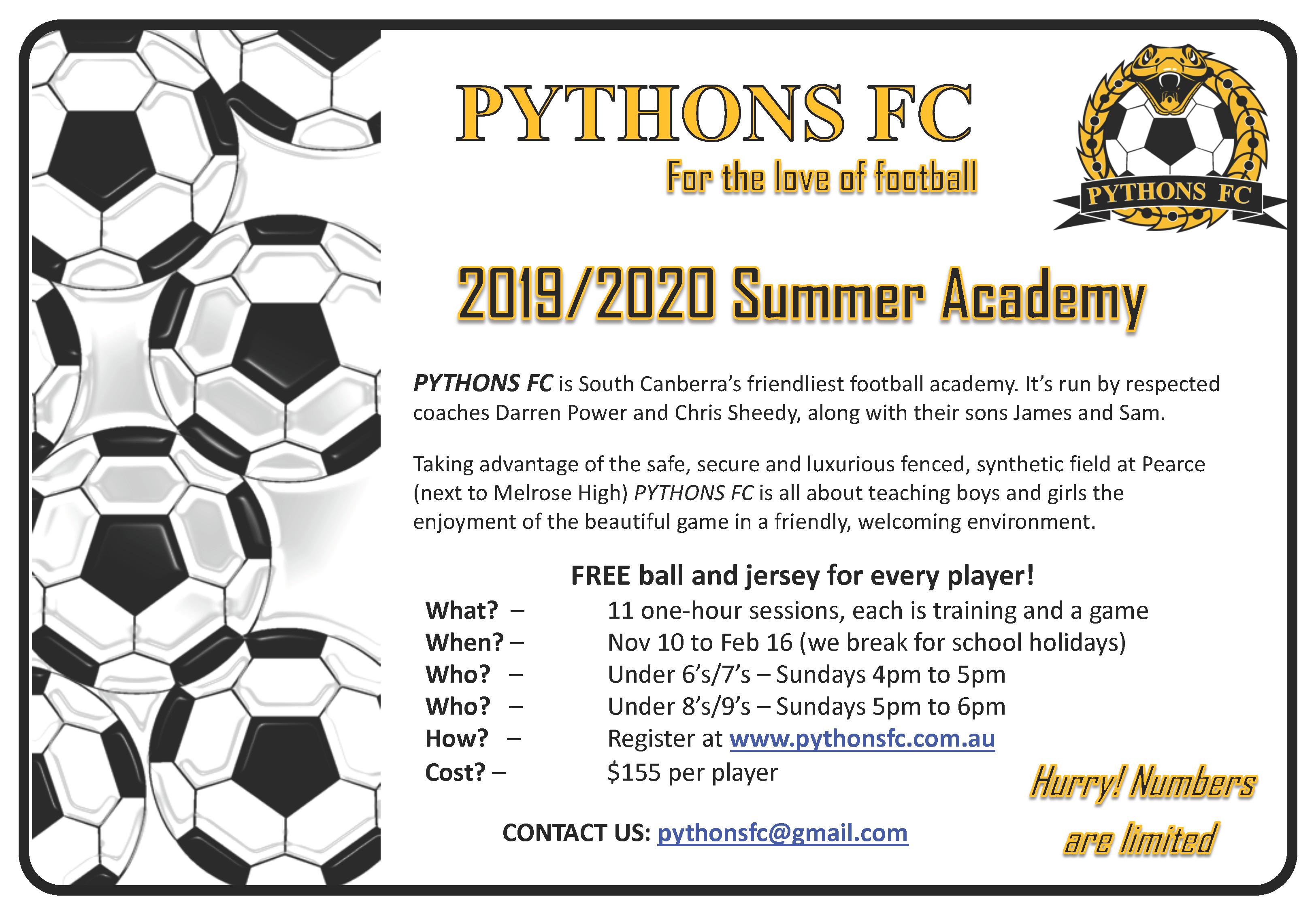 2020 summer academy flyer3