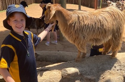 Cody and goat