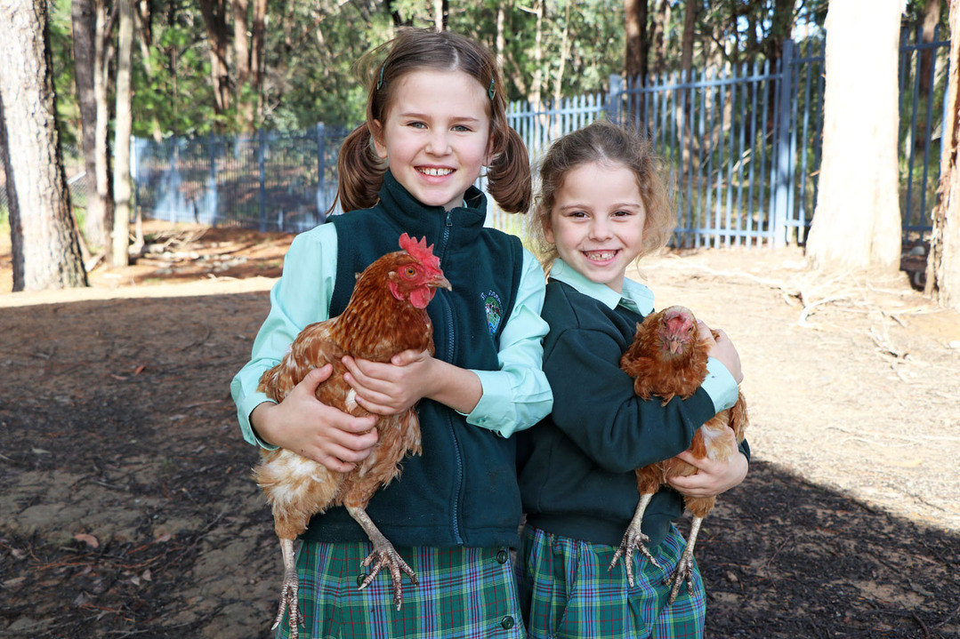 kids holding the chickens