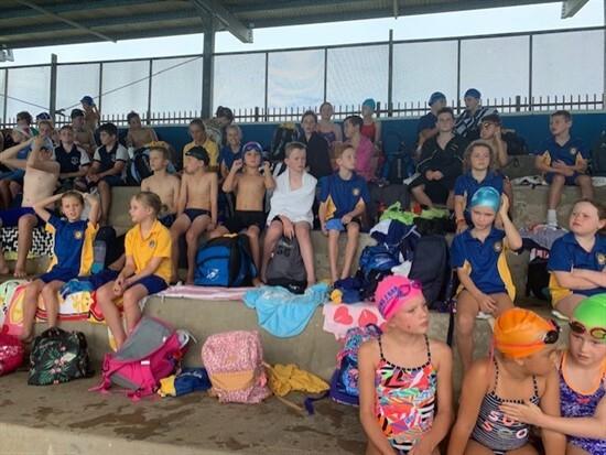 Regional Swimming 3