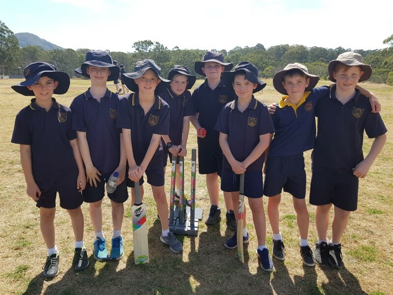 Cricket Gala Day