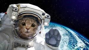 Remote_Learning_Astronaunt.jpg