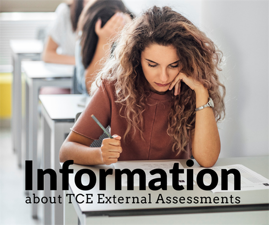 TCE_external_assessments.png