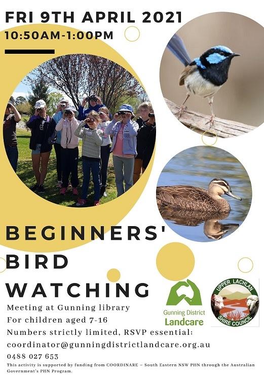 Beginners bird watching flyer for school newsletters