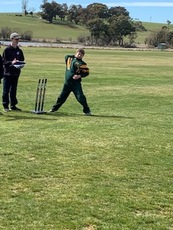 cricket_2.jpeg