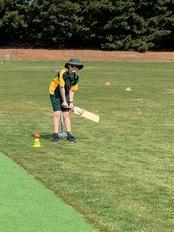 cricket.jpeg