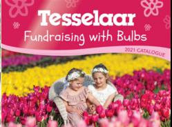 Bulb_fundraising.png