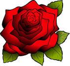 red_flower.jpg
