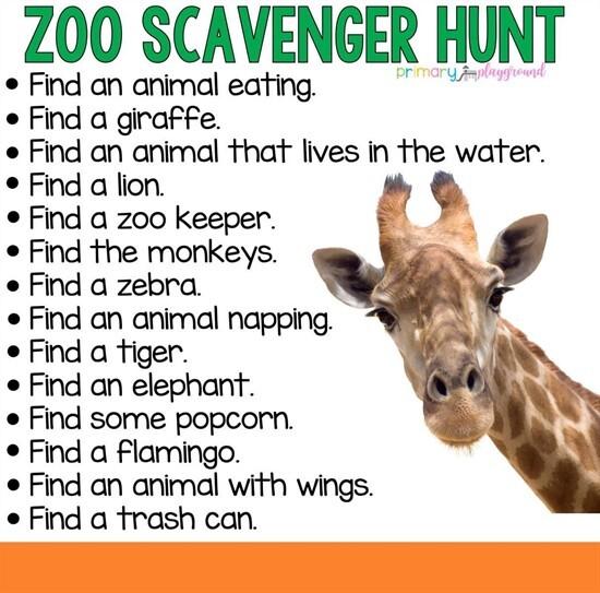Zoo_hunt.JPG