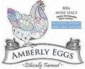 amberly_eggs_2.jpg