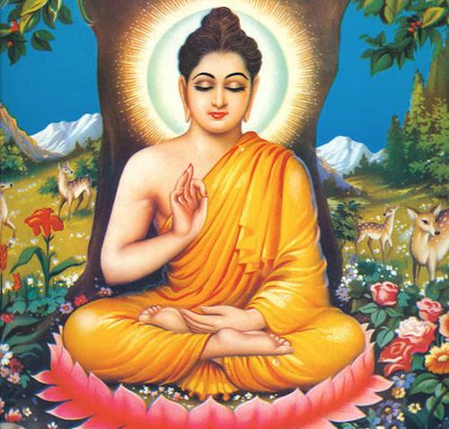 Week_6_LT_Buddha.png