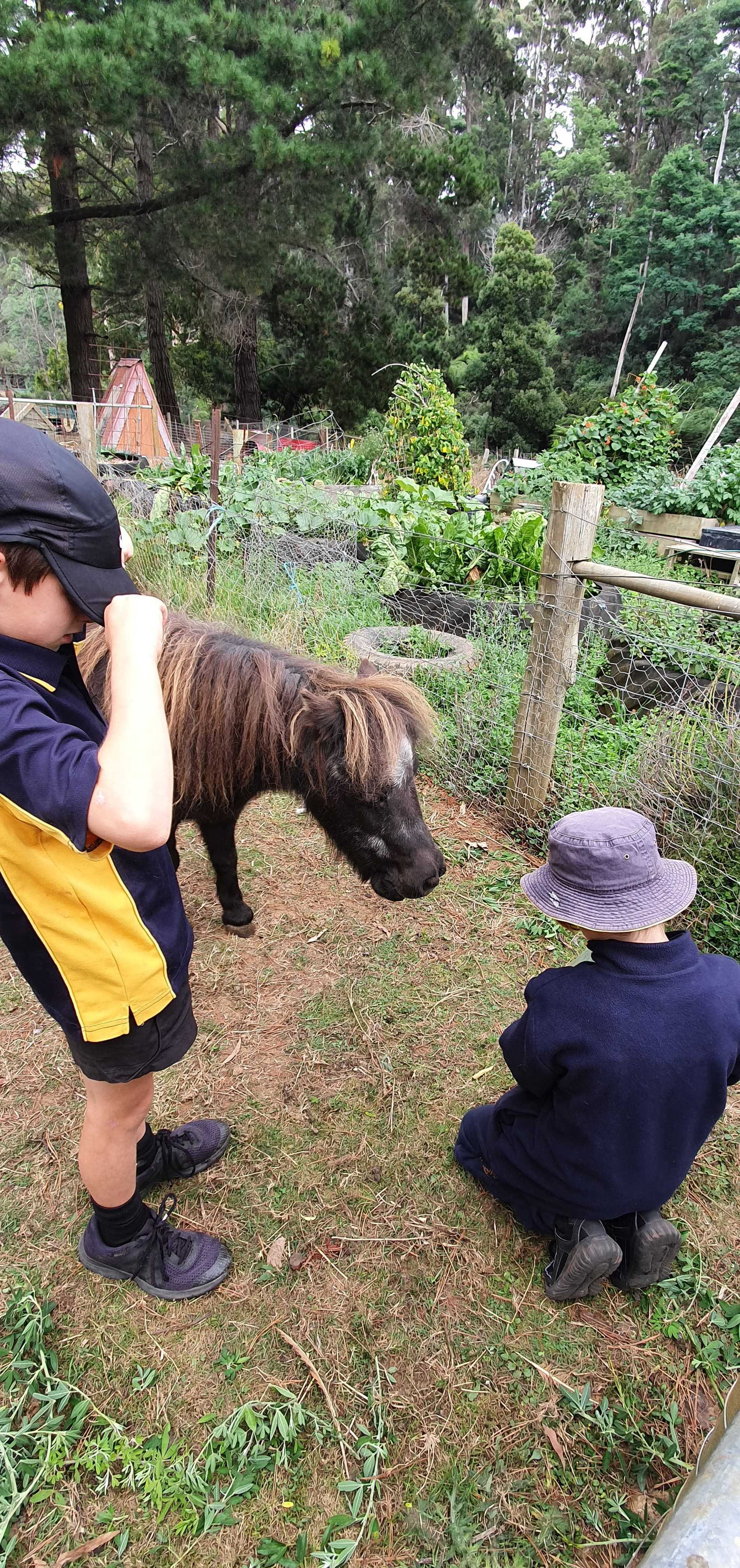 Christian and Tyson with pony