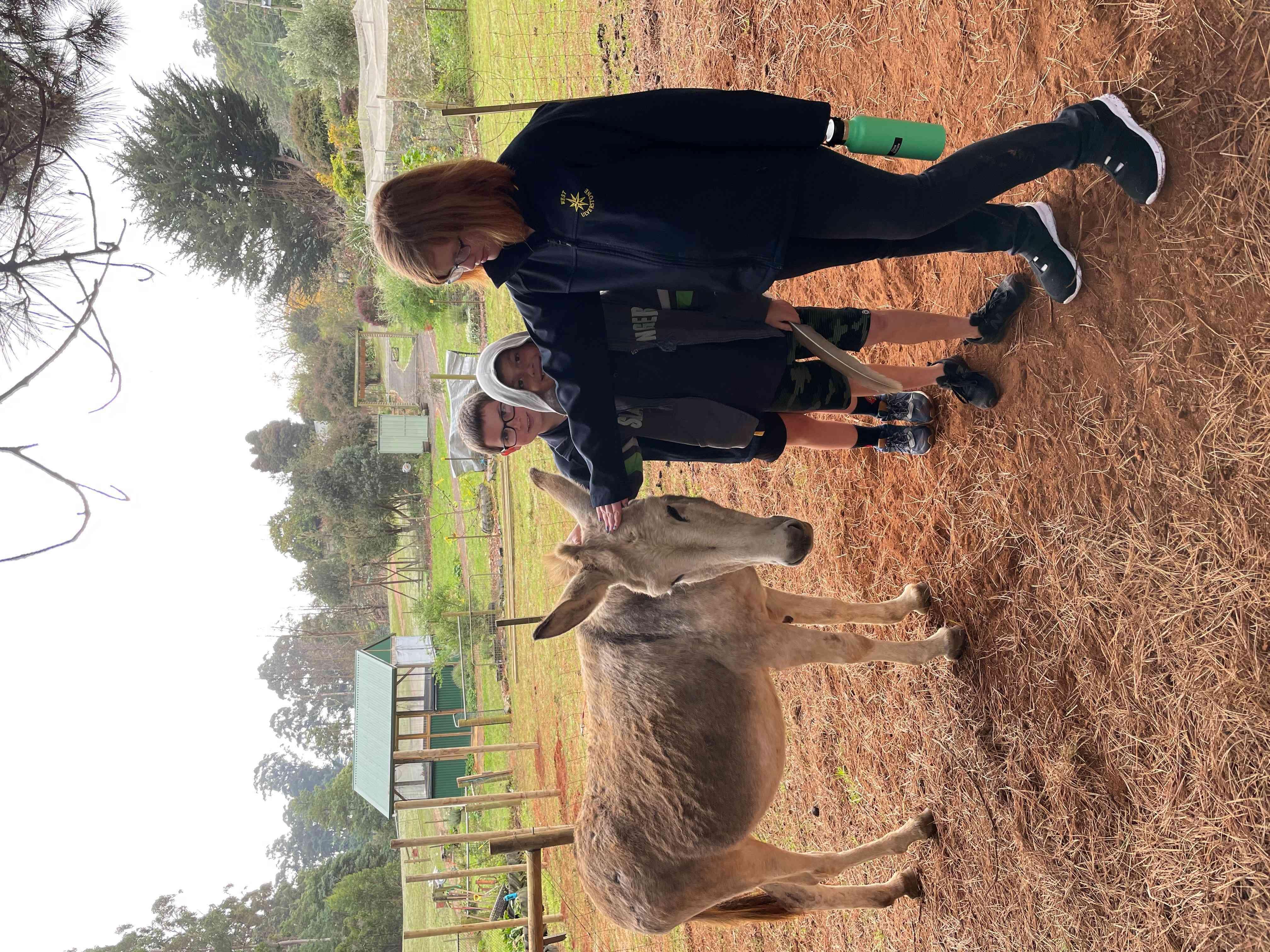 Donkey with Chloe, Izayah and Tyron